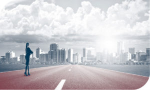 FAJ business roadmap